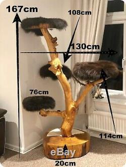 Handmade Bespoke Multi Cat Tree SOLID OAK AND APPLE WOOD