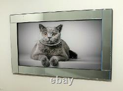 Mirror Frame Cat Picture with Glitter Liquid Crystal Glass Wall Art 100x60cm