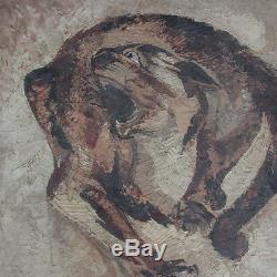 Pierre Van Parys Bourdelle (1903-1966) Art Deco Oil Painting Cat Signed 1928