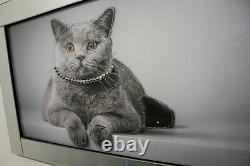 Image De Chat De Cadre De Miroir Avec L'art Liquide De Mur De Verre De Cristal De Scintillement 100x60cm