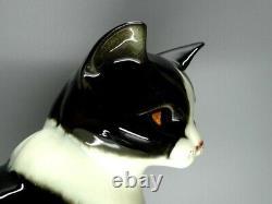 Rare Vintage Porcelaine Mignon Cat Figurine Goebel Allemagne 1955-75 Céramique Art Décor